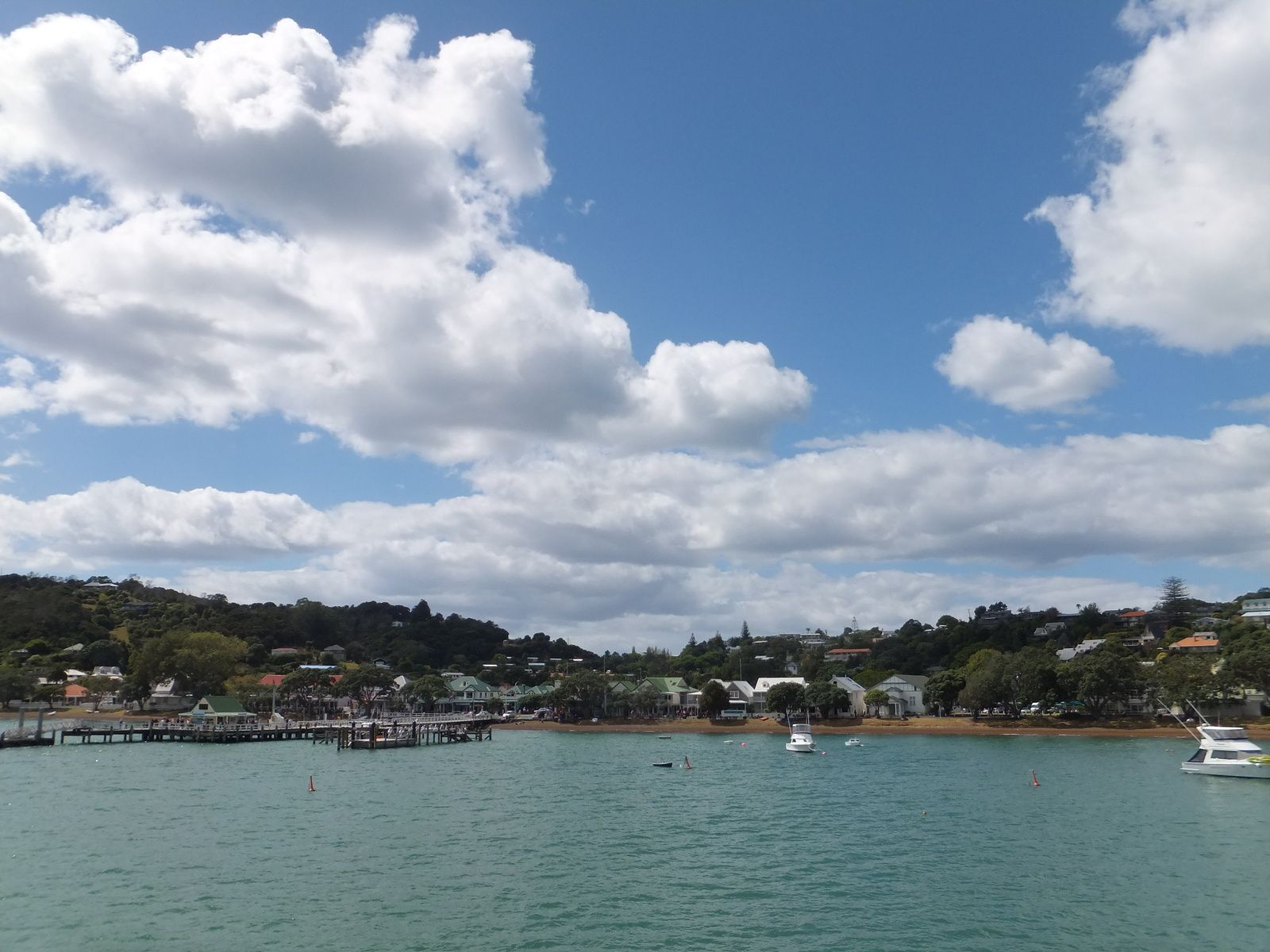Paihia : Couchsurfing &amp&#x3B; Dolphins !