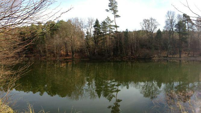 Mon chez-moi et ses étangs