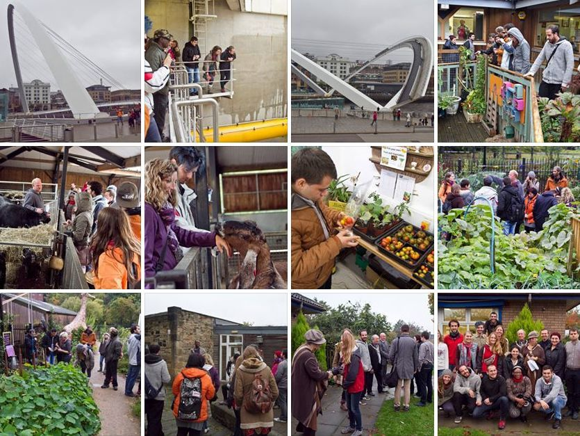 """Contact Making Event - """"Farming with young people"""""""