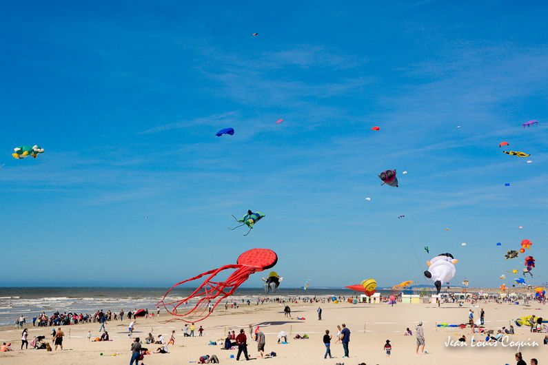 Cerfs volants 29e rencontres internationales de   BERCK sur MER 2015