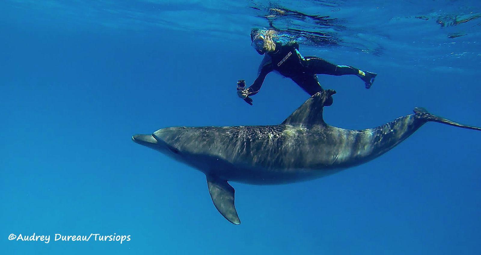 Valérie en action dans le bleu d'un lagon particulièrement protégé.
