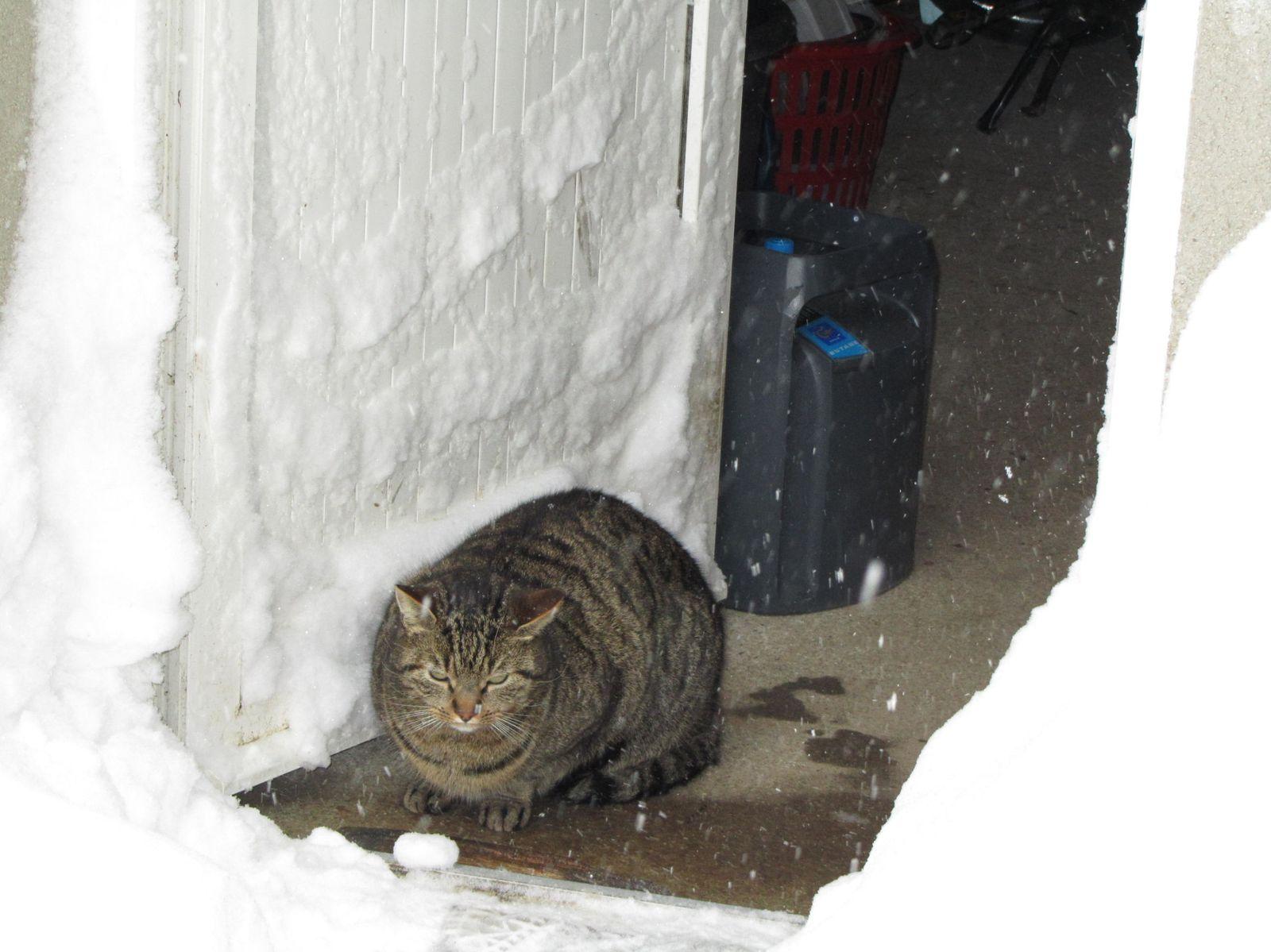 Là on est mieux. Le problème, c'est que la neige rentre aussi dans le garage.