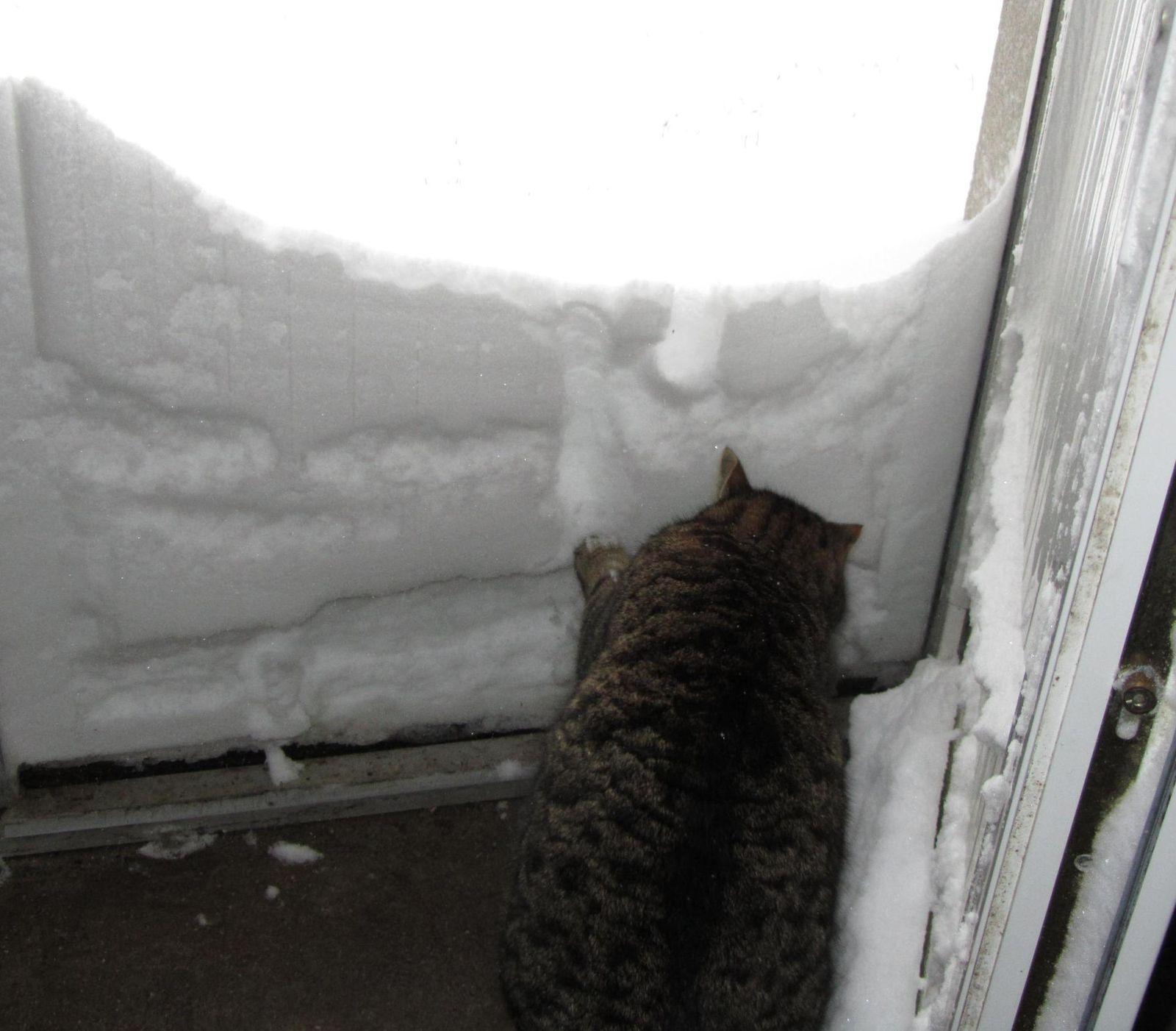 Ben ça alors, il y a un mur de neige !