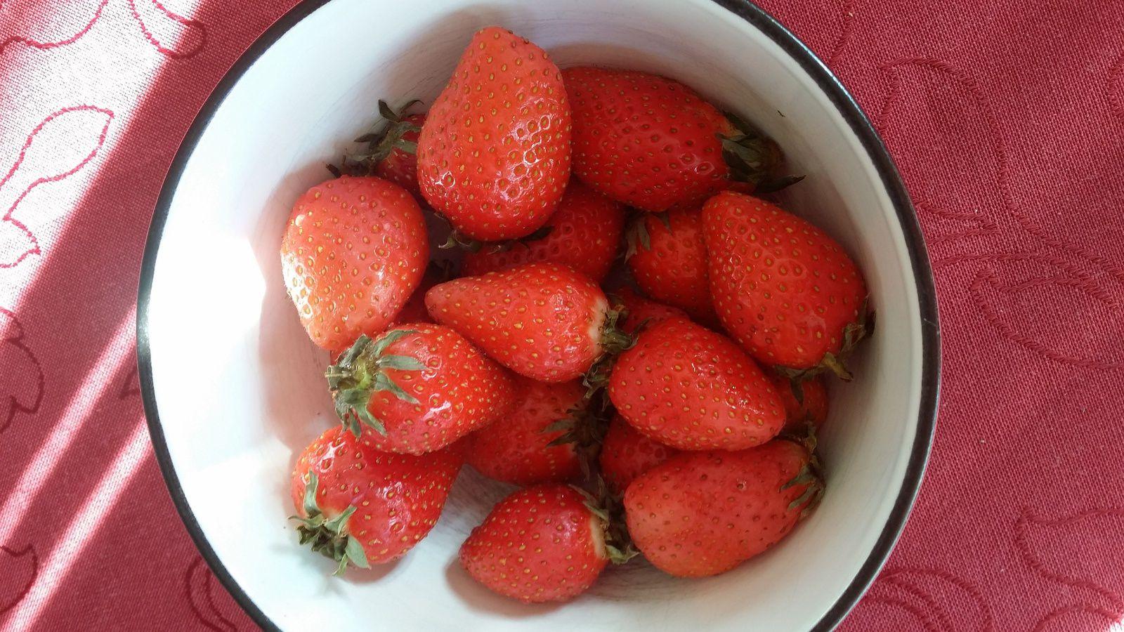 Premières fraises de saison...