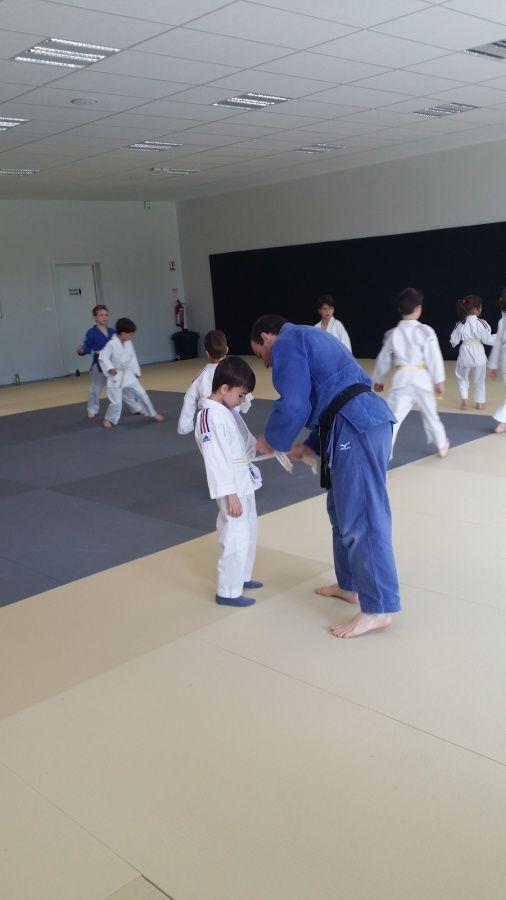 Judo dans le dojo !