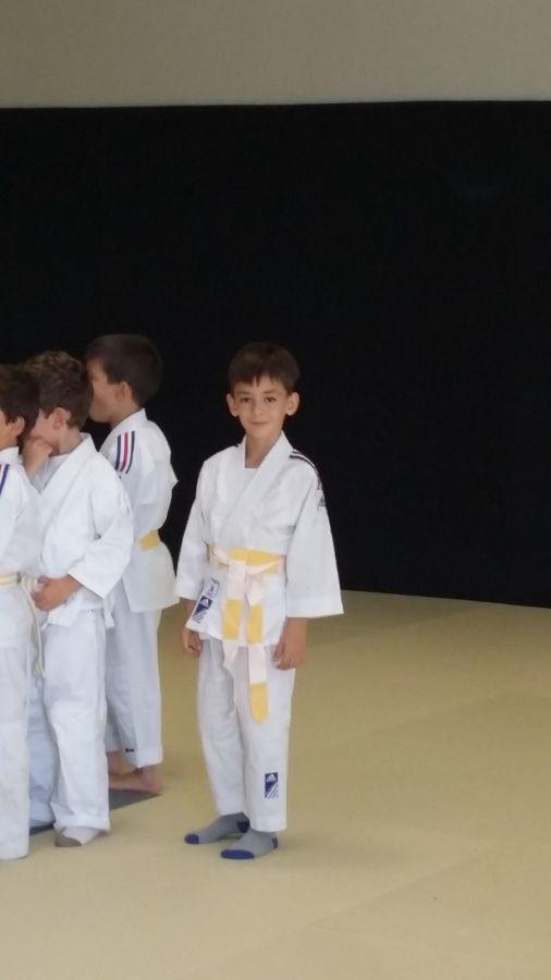Reprise des cours de judo...
