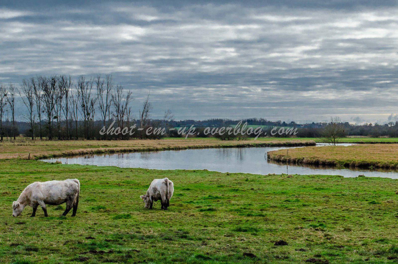 Region Nantaise, Pays de la Loire
