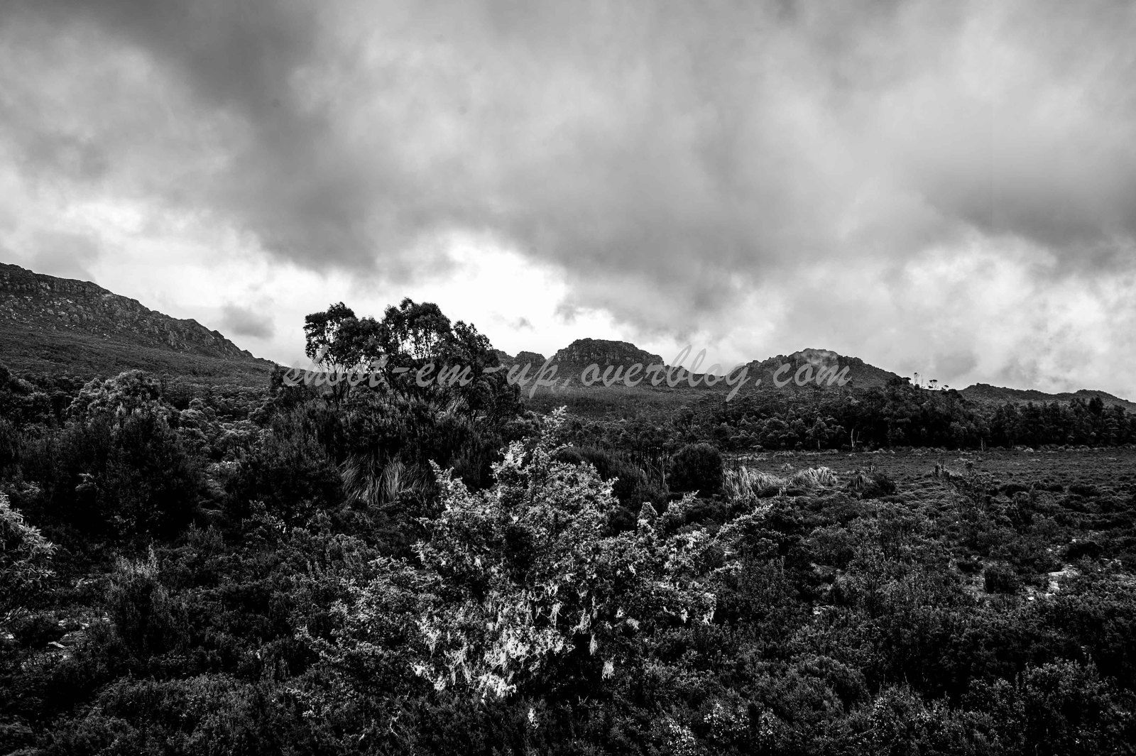 Tasmania South West