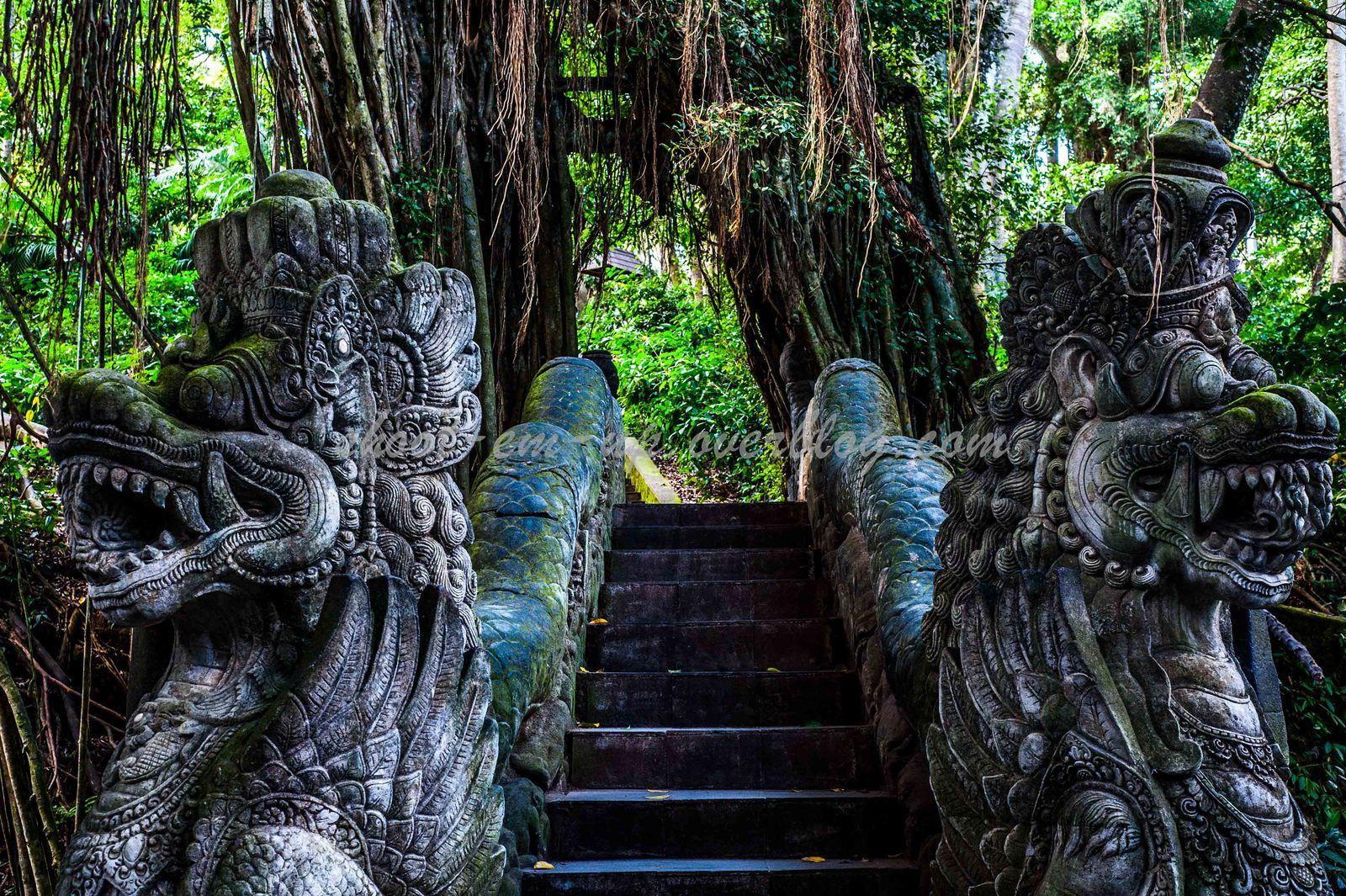Ubud and Surrounding