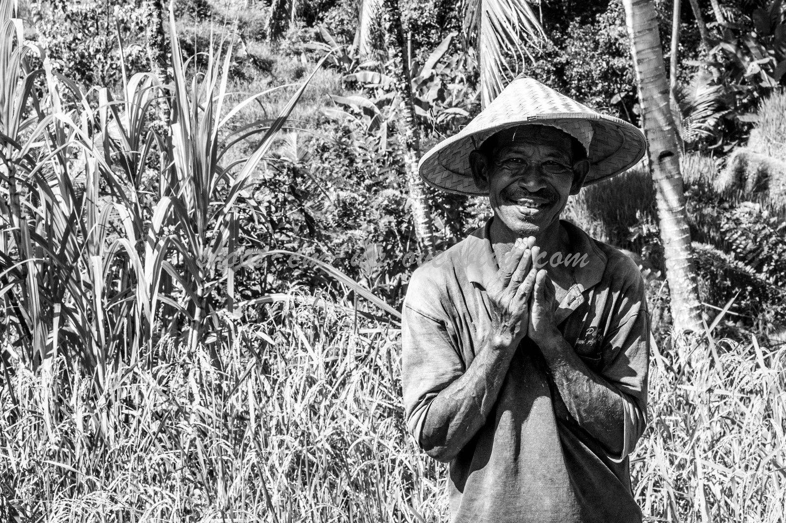 Mount Batur, Rice Fields, Tampaksiring Holly Water