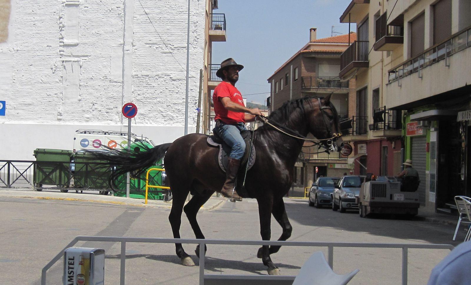 Sud-est de l'Espagne, ressemblance troublante avec Chuck Norris, chevauchant un magnifique canasson