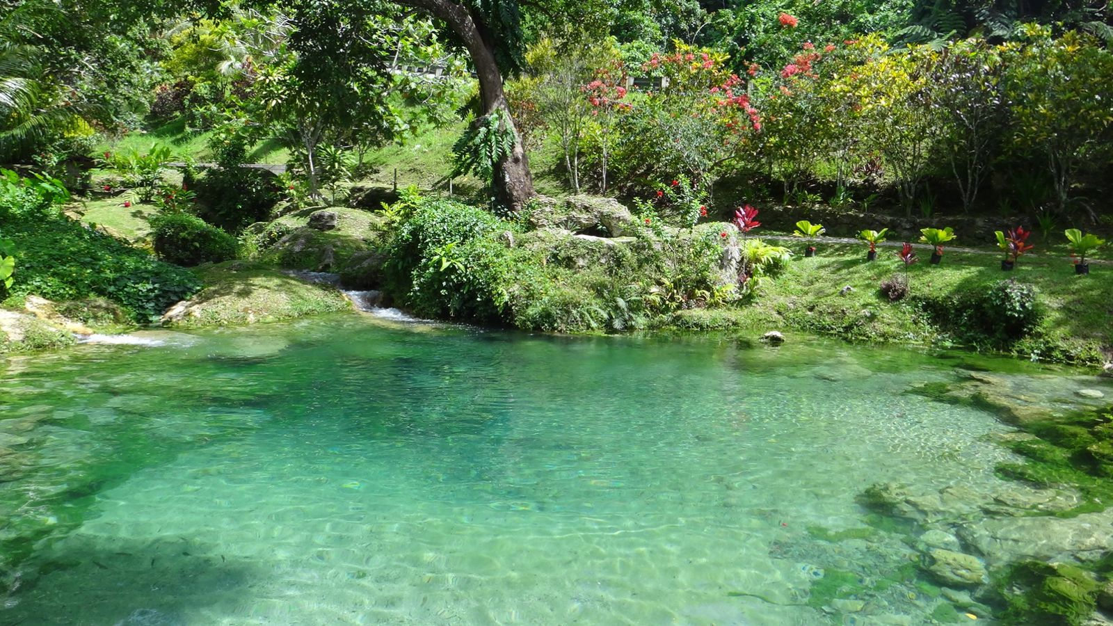 Efate cascades de m l au vanuatu for Autoconstruction piscine naturelle