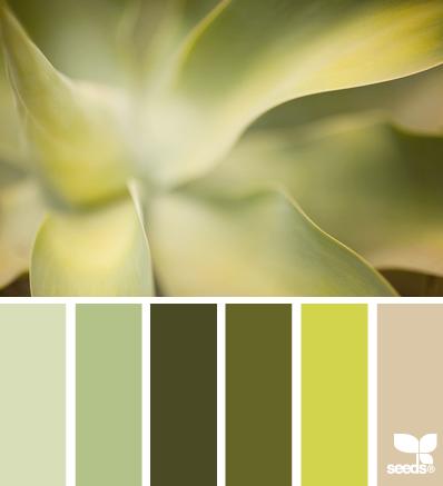 design seeds - vert -