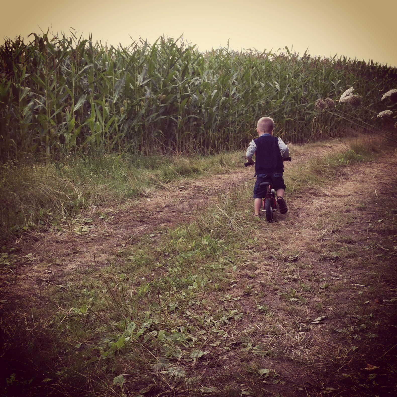 promenade à vélo dans les champs