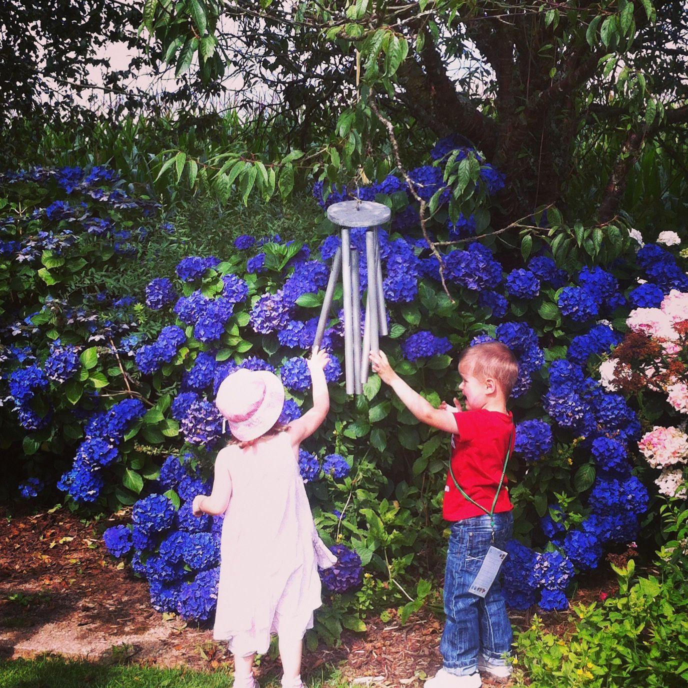 promenade dans les jardins de Renaudies - c'était sublime