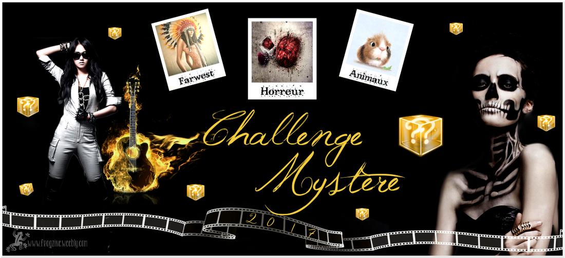 Challenge Mystère 2017