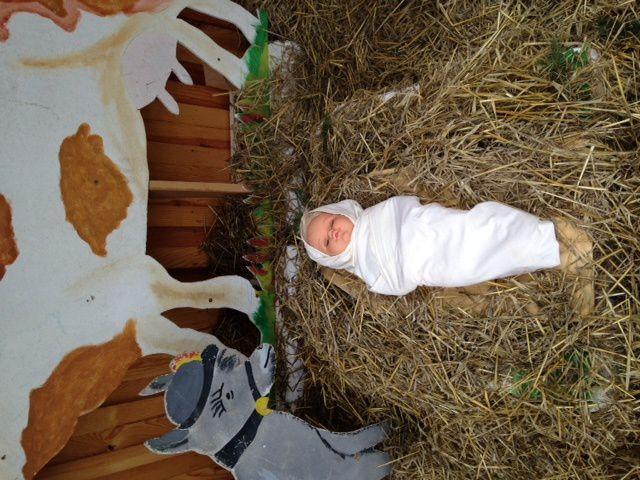 Noël 2014 à Douchy (45220)