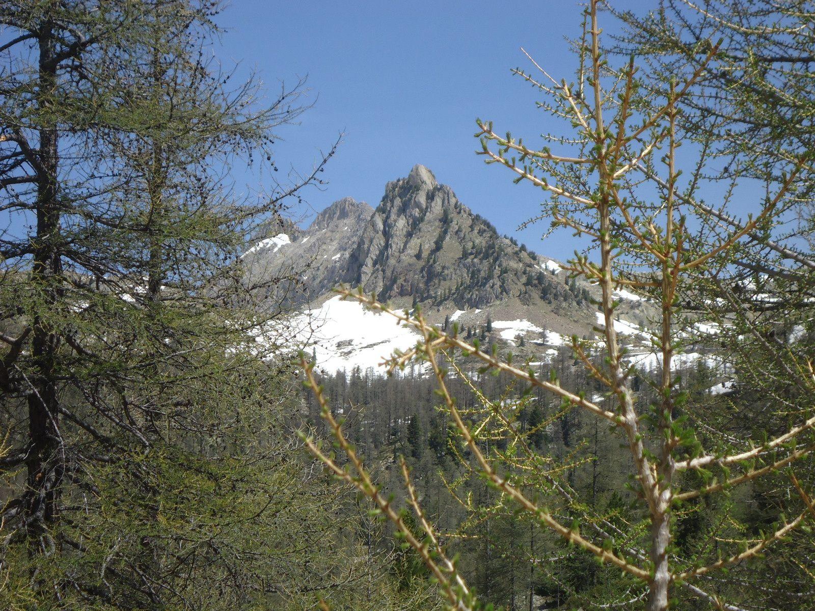 Journée en haute montagne