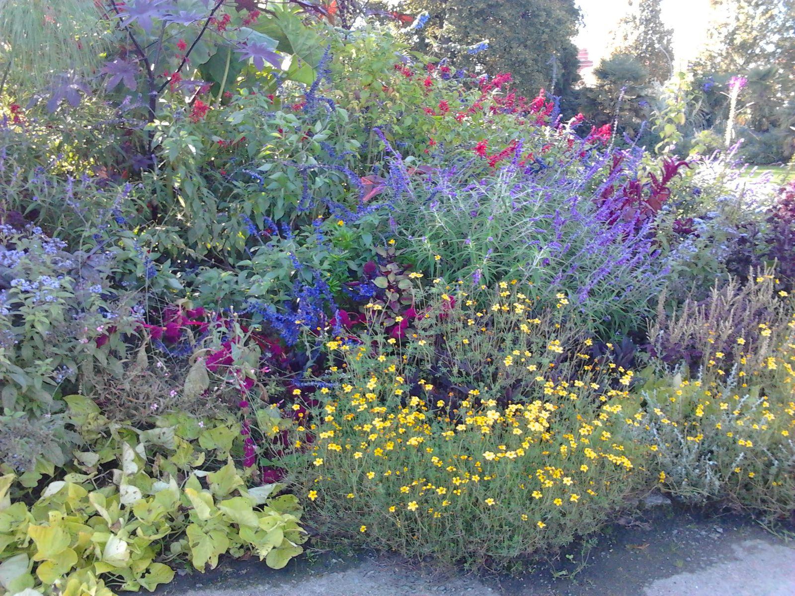 Entretenir Le Jardin En Ao T Jardins Imaginaires