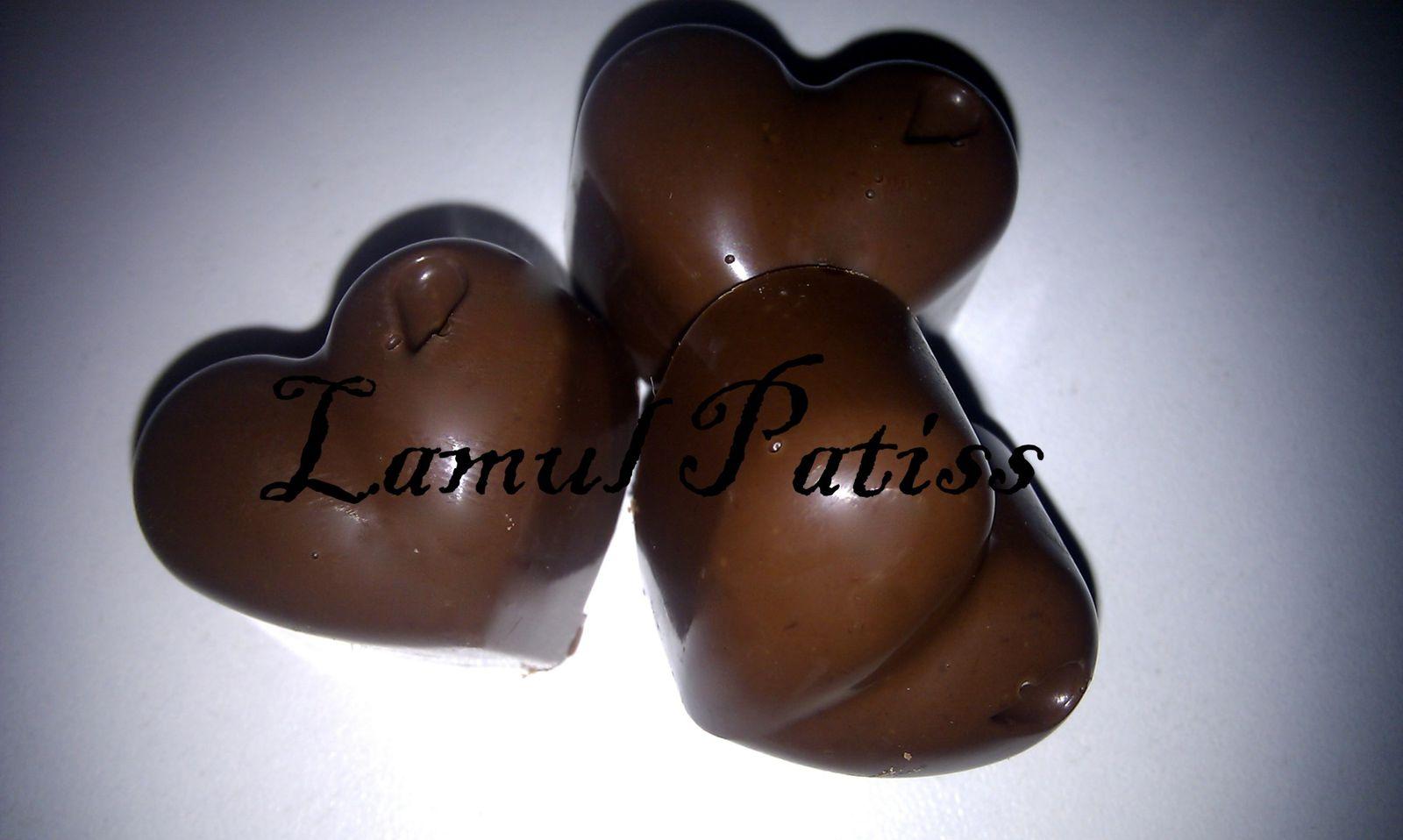 Chocolats au lait / pralinoise