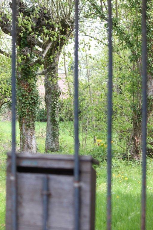 Ode au jardin chez Rodin