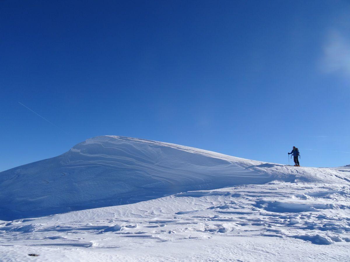 Ski dans la forêt dense du Mont Aunos