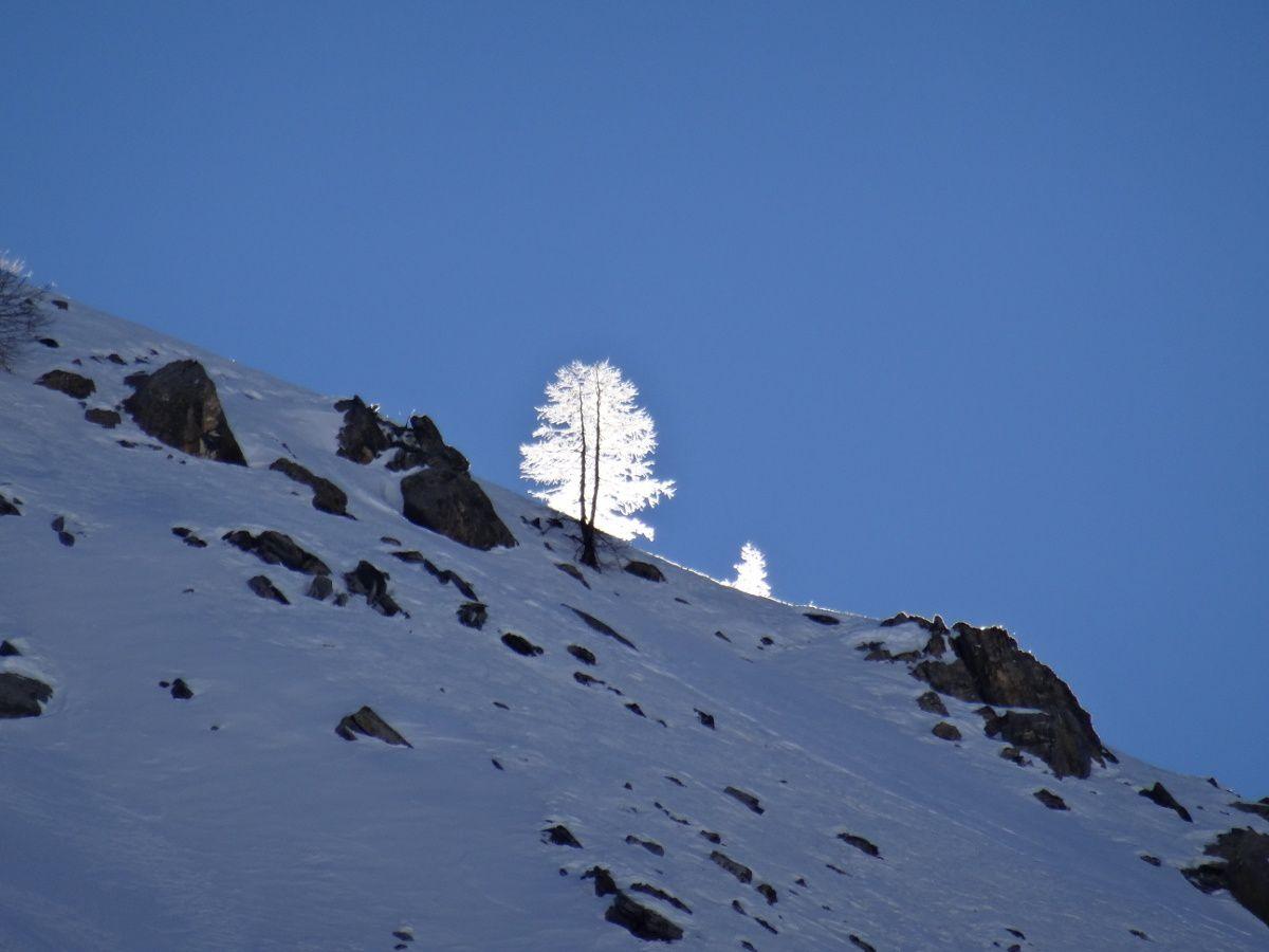 Ski dans le couloir de &quot&#x3B;la raie des fesses&quot&#x3B; à Fort Carra