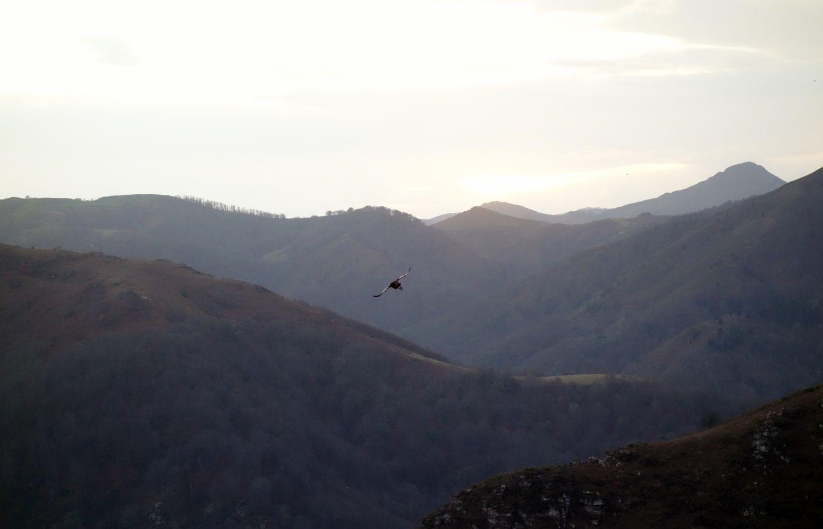 Collines du Pays Basque