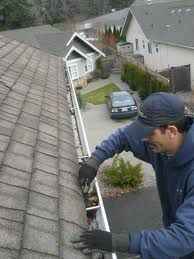 Protecting Commercial Gutters