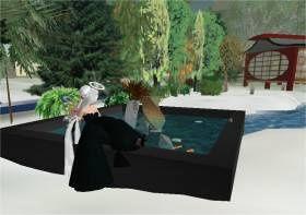 Visite de The Shin Tao Haiku Retreat