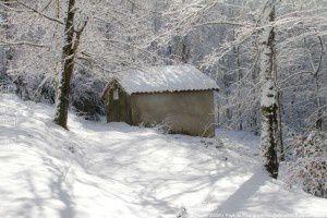 Refuge forestier du col de Touron
