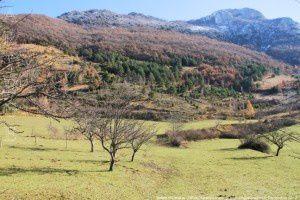 Vallée d'Ornolac (680m)