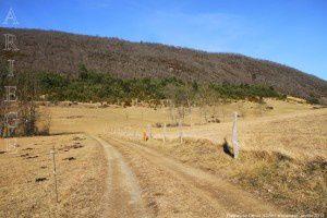 Plateau de Génat (922m)
