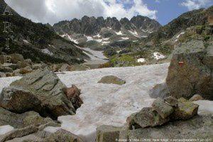 Ruisseau de l'Albe (2280m)