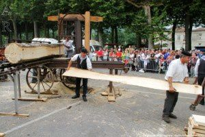 Sciage en long - Place de la Mairie