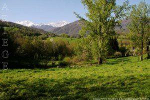 Cescau (570m)