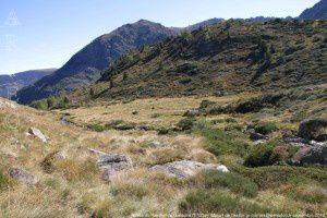 Vallée de Rieufort de Gascous (1700m)