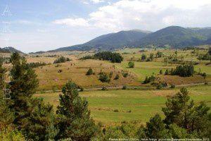 Plateau d'Aillou (1200m)
