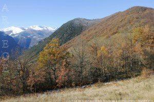 La Pique vue du col d'Ussat (820m)