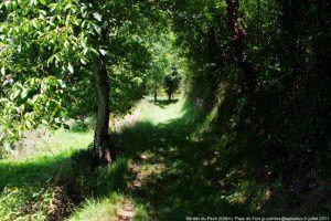 Sentier du Pech (500m)
