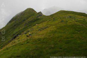 Tuc de Bignau (2395m)