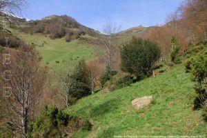 Sentier du Trapech (1350m)