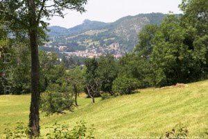 Foix vue du Pigeonnier (500m)