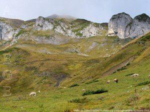 Vallon de Saleix (1500m)