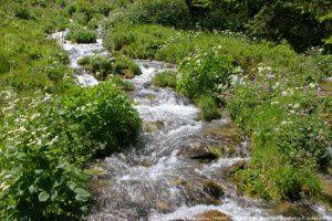Ruisseau du Mourguillou (1600m)