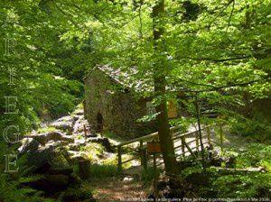 Moulin de la Laurède - La Barguillère