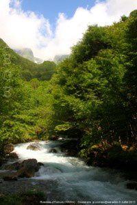 Ruisseau d'Estours (1000m)