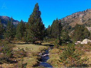 Cortal Subra (2220m)