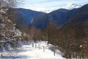 Route du col de Larnat (1180m)