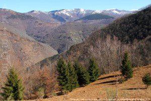 Vallée de l'Arac vue de Joubac (995m)